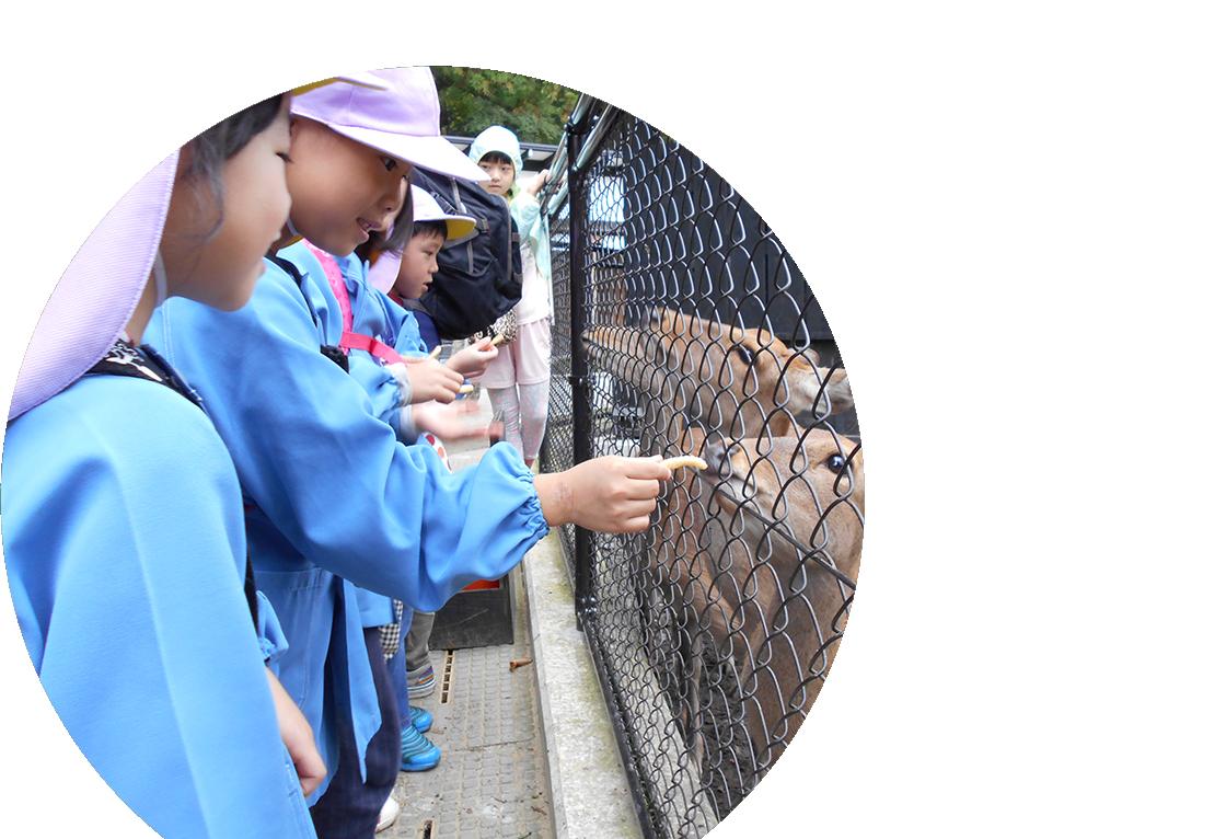 ぎんなん保育園のホームページ 新潟県燕市の保育園